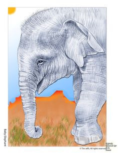 Tim Jeffs freebie page Baby Elephant Digital Colouring