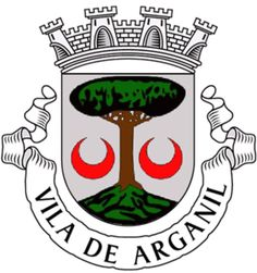 Municipality of Arganil, Coimbra, Portugal (Area Km²) Coat Of Arms, Clip Art, Stamp, Terra, Badges, Flags, Stamps, Maps, Flag