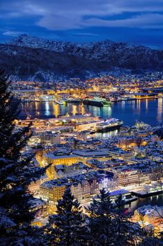 Blue hour in Bergen Bergen, Norway. Fougerouse Arnaud.