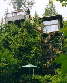 Cedar Creek Treehouse Ashford, Washington-Tucked 50 feet up in the air in a centuries-old cedar and bordering Gifford Pinchot National Forest, the Cedar Creek Treehouse is outfitted with a sleeping loft, kitchen, and glass-enclosed observation room with indoor hammock.