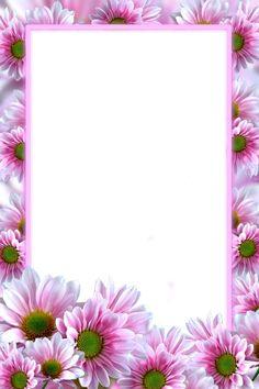 Paper Background Design, Flower Background Wallpaper, Flower Backgrounds, Framed Wallpaper, Graphic Wallpaper, Butterfly Frame, Flower Frame, Boarders And Frames, Frame Border Design