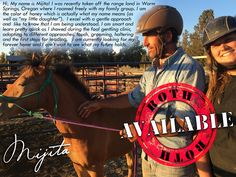 Please contact us at 303-642-7341 for more info on how to bring me home with you!  You can also visit the ROTH website at: http://www.reachouttohorses.com/