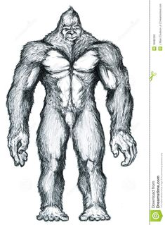 vector bigfoot images | Bigfoot drawing drawn with graphite on paper traditionally.