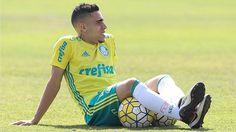 Gabriel aguarda renovação mas mostra otimismo com o Palmeiras em 2017 #timbeta #sdv #betaajudabeta