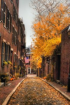 One of my favorite places to visit in Boston.  Acorn st.  Boston, Mass.