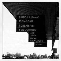 On their way on their global journey, w? #Icelandair. Next stop, beautiful Reykjavik, Iceland. - @monikasalita- #webstagram