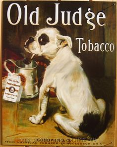 Vintage Replica Tin Metal sign if my dog dont like you humorous funny cute 1838
