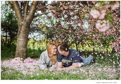 Cherry blossom engagement pictures