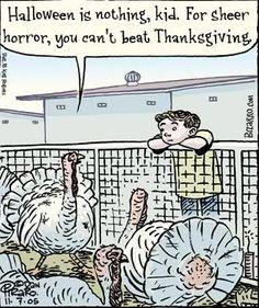 Thanksgiving Humor Go Vegan And End The Turkey Animal Farming  Million Turkeys