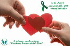 6 de junio: Día Mundial de los Transplantados