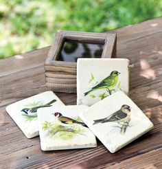 Vintage Bird Wooden Boxed Coasters: Set of 4