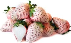 White Strawberries Information and Facts White Strawberry, Exotic Fruit, Fruits And Veggies, Vegetables, In The Flesh, Blush Pink, Photoshop, Strawberries, My Favorite Things