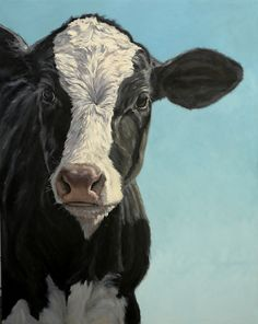 """Holstein Calf Out of the Blue by denise rich Oil ~ 60"""" x 48"""""""