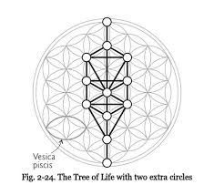 Image result for flower of life pattern