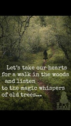 Let's take our hearts for a walk in the woods and listen to the magic whispers of old trees. Image via Wild Woman Sisterhood fb Sassy Quotes, Great Quotes, Quotes To Live By, Me Quotes, Motivational Quotes, Inspirational Quotes, Beauty Quotes, Super Quotes, Quotes On Trees
