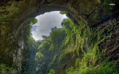 The World's Weirdest Natural Places Son Doong Cave welcome to Jurassic Park!