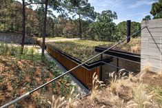 Family House Under the Trees - Irekua Anatani House Sheltered Housing, Living Roofs, Living Walls, Underground Homes, Contemporary Cottage, Minimalist Architecture, Contemporary Architecture, Floating House, Modern Architecture