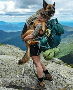 Meet Bear: The mountain-climbing, desert-hiking adventure dog of Nicole Handel Camping And Hiking, Camping Life, Camping Dogs, Beach Camping, Camping Survival, Outdoor Survival, Mountain Climbing, Rock Climbing, Adventure Is Out There