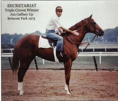 Secretariat - I remember watching all three races.  Even at my age then, I knew he was a king among horses.