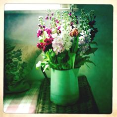 Vintage flowers..This photo is fragrant stock mixed with garden flowers in a vintage pitcher. #FlowerBoxDublin can do something similar with your vintage container with fresh flowers.