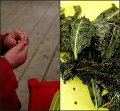 baked kale chips  http://glutenfreegirl.com/2010/02/baked-kale-chips/