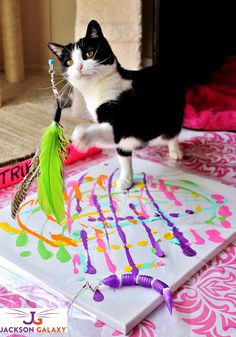 Cat Painting- This SIMPLE and fun art project can be done with your cat! Discover #JacksonGalaxyCatPlay by Petmate toys and enrichment tools at PetSmart and unleash your cat's inner Mojito! Foster a cat's natural instincts to hunt, catch, and kill with these colorful and engaging cat toys! #Sponsored