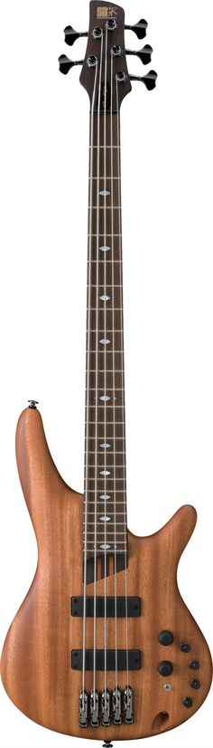 Wood 5-string bass, Ibanez.I love this bass sound
