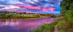 albuquerque nm   The Bosque, Albuquerque New Mexico...