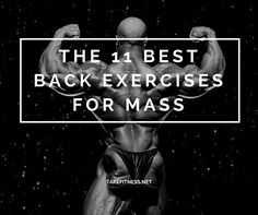Here we'll look at several of the best back exercises for mass and explain how you can optimise your back training.