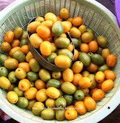 Ciruela amarilla https://farmtropical.com/product/ciruela-jocote-spanish-plum-hog-plum/