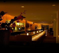 Nobu - Miami    1901 Collins Ave  Miami, FL 33139  (305) 695-3232    Visit www.noburestaurants.com/ for more info!    For more info on exciting and fun Miami and Miami Beach events, visit our blog at http://floridasouthbeachrentals.blogspot.com/,and for amazing condo rentals right ON Miami Beach, just a walk to some of the greatest clubs, visit http://www.floridasouthbeachrentals.com/