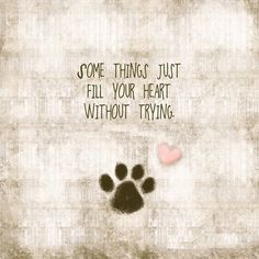 Pet Quotes And Sayings. QuotesGram