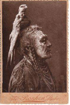 OUTSTANDING PHOTOGRAPH OF A NATIVE AMERICAN MAN WITH A TURKEY VULTURE PERCHED ON HIS HEAD