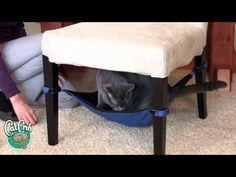 Brilliant product for your cat - Cat Crib...A space-saving cat hammock your feline will love! This is so GREAT !