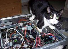 """I natt skulle Bjørn-Kristian """"bare fikse noe"""" på datarommet. Det gikk mindre enn bra."""