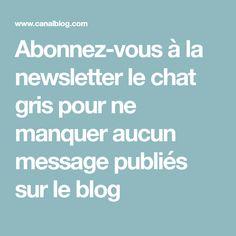 Abonnez-vous à la newsletter le chat gris pour ne manquer aucun message publiés sur le blog