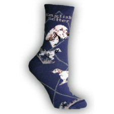 English Setter Socks UK Size 7 to 10 English Setters, Novelty Socks, Cushions, Tapestry, Pets, Stuff To Buy, Gift, Throw Pillows, Hanging Tapestry