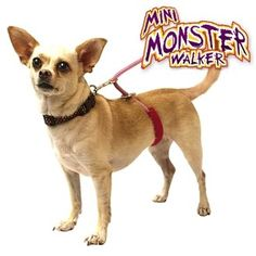 Mini Dogs Under 20lbs Monster Walker Anti No Pull Dog Leash Harness Small Pink >>> Be sure to check out this awesome product.