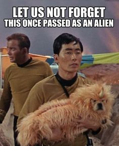 The Dogs of Star Trek: http://www.milesandemma .com/2013/05/the-dogs-of-star-trek.html