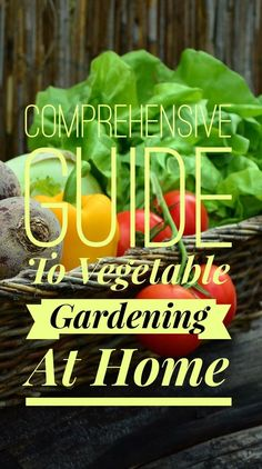 Everything you need to know about growing vegetables at home.  Planting, watering, fertilizing and harvesting.