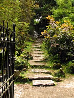 The manor MUCKROSS HOUSE near the city of Killarney, Ireland --a garden path by Moya T.