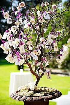 I like the idea of everyone writing a wish for the couple and then tying it on a tree. Reminds me of the Yoko Ono tree in DC we saw.