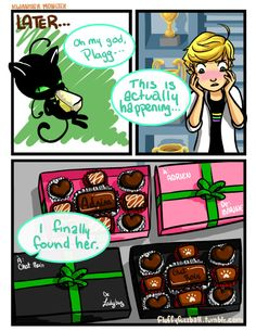 (Miraculous: Tales of Ladybug and Cat Noir) Chocolate 4