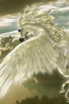 Pegasus:era el caballo de los cielos, tenia alas y podian volar, pertenece a la mitología griega y romana, a parte era el caballo de Hércules y le usaba para pasear, para ir a las batallas y demas cosas.