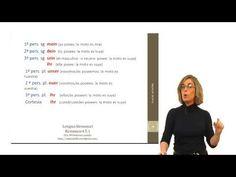 Alemán para hispanohablantes: Pronombres posesivos (Fase 1)