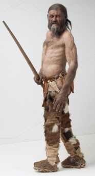 Reconstruction of Ötzi the Iceman, a well-preserved natural mummy of a man who lived around BCE. The mummy was found in September 1991 in the Ötztal Alps.
