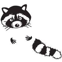 Bügelbild - Mr.Raccoon - Waschbär