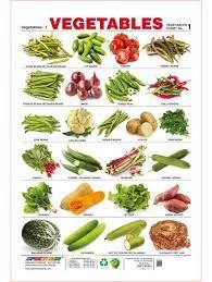Image Result For Vegetables Name Charts Vegetable Chart