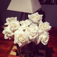 Perbes's roses
