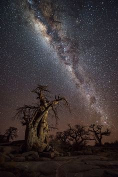 Image by Mems Carim - Getaway Magazine Our World, Milky Way, Ciel, Northern Lights, Universe, Island, Cityscapes, Gallery, Separate